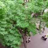 初夏の北京 団結湖の住宅街